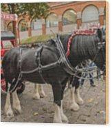 Horse Dray Wood Print