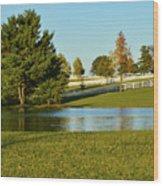Horse Farm Pond Wood Print