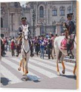 Horse Guard At Parade Wood Print