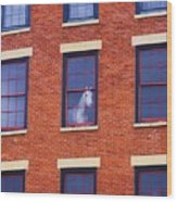 Horse In An Upstairs Window Wood Print