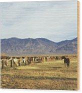 Horse In Eastern Sierras Wood Print