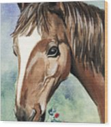 Horse In Love Wood Print