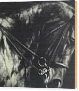 Horse In The Dark II Wood Print