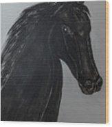 Horse Named Misty Wood Print