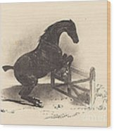 Horse Jumping A Barrier Wood Print