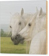Horse Kiss Wood Print