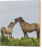 Horse Love Wood Print