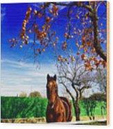Horse Wood Print by Niki Mastromonaco