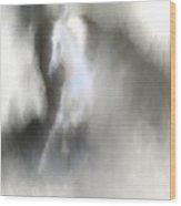Horse No.1 Wood Print