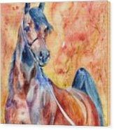 Horse On The Orange Background Wood Print