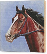 Horse Painting - Determination Wood Print by Crista Forest