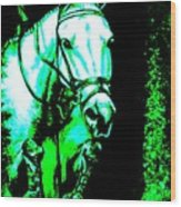 Horse Painting Jumper No Faults Black Blue And Green Wood Print