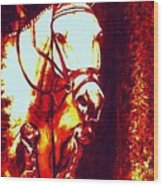 Horse Painting Jumper No Faults Deep Blues And Reds Wood Print