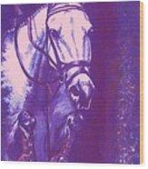 Horse Painting Jumper No Faults Lavender Wood Print