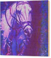 Horse Painting Jumper No Faults Purple And Blue Wood Print