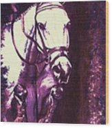 Horse Painting Jumper No Faults Purple Wood Print