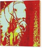 Horse Painting Jumper No Faults Red And White Wood Print