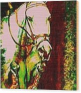 Horse Painting Jumper No Faults Reds Greens Wood Print