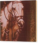 Horse Painting Jumper No Faults Soft Browns Wood Print