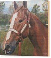 Red Dun Horse - Reds Done Dancin By Marilyn Nolan-johnson Wood Print
