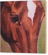 Horse Portrait Horse Head Red Close Up Wood Print