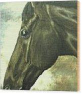 horse portrait PRINCETON bright light Wood Print