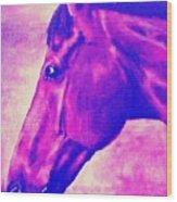 horse portrait PRINCETON pink Wood Print