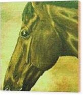 horse portrait PRINCETON soft colors Wood Print