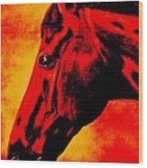 horse portrait PRINCETON sunset Wood Print