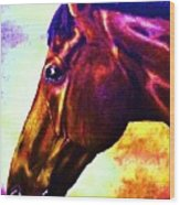 horse portrait PRINCETON wow purples Wood Print