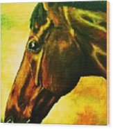 horse portrait PRINCETON yellow Wood Print