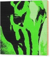 horse portrait RED green Wood Print