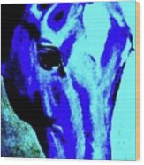horse portrait RED wow blue Wood Print