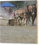 Horse Pull - Team A Wood Print