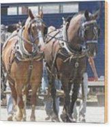 Horse Pull J Wood Print