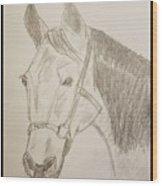 Rosie The Horse Wood Print