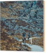 Horse Riders At Mahon Falls Wood Print