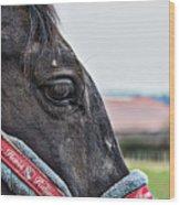 Horse Riding Horse Wood Print