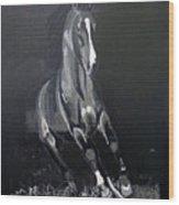 Horse Running Along The Shore Wood Print