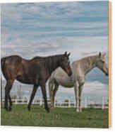 Horses #2 Wood Print