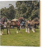 Horse Show Wood Print