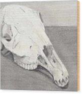 Horse Skull Wood Print