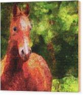 Horse Study #2 Wood Print