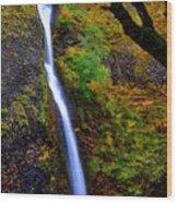 Horse Tail Falls - Autumn  Wood Print