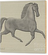 Horse Weather Vane Wood Print