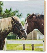 Horse Whisperer Wood Print