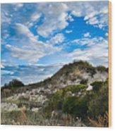 Horseneck Beach Ma. 2 Wood Print