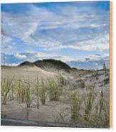 Horseneck Beach Ma. 3 Wood Print