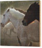 Horses-02 Wood Print
