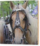 Horses 2 Wood Print